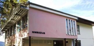 Gimnazija Metković Goethe-Institut