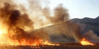 požari