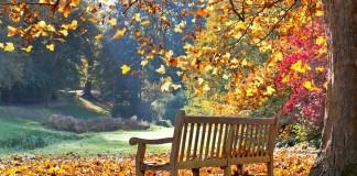 Jesen/ rujan