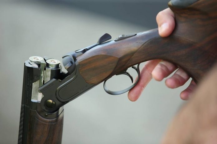 puška, kategorija C